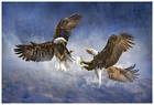 Eagles Survival Fighting
